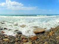 Экологическая акция «Берегите Черное море»!