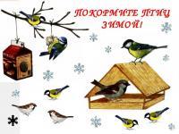 """Экологическая акция """"Покормите птиц зимой"""""""