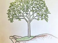"""Экологическая акция """"Посади дерево!"""""""